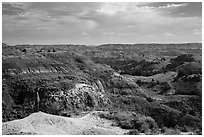 Park visitor looking, North Dakota Badlands Overlook. Theodore Roosevelt National Park, North Dakota, USA. (black and white)