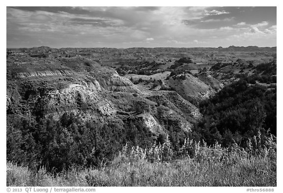 North Dakota badlands landscape. Theodore Roosevelt National Park (black and white)
