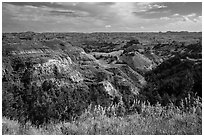 North Dakota badlands landscape. Theodore Roosevelt National Park ( black and white)