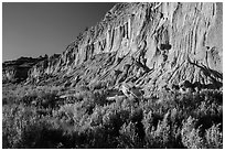 Grasses and cliff with cannonball concretions. Theodore Roosevelt National Park, North Dakota, USA. (black and white)