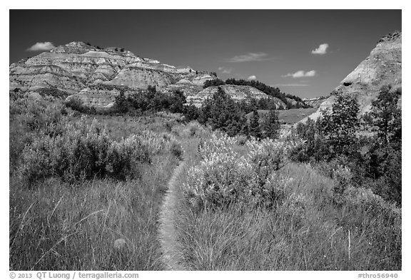 Caprock coulee trail. Theodore Roosevelt National Park (black and white)