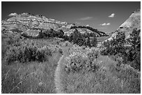 Caprock coulee trail. Theodore Roosevelt National Park, North Dakota, USA. (black and white)