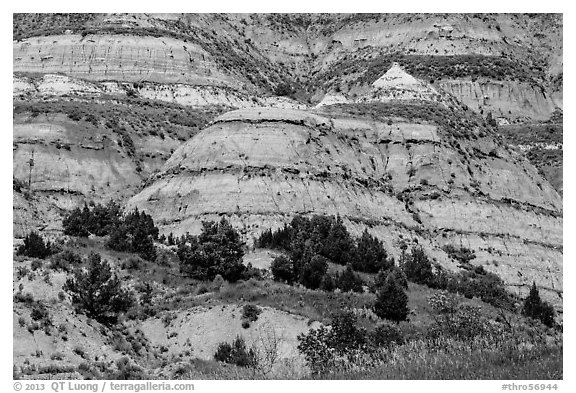 Badlands strata. Theodore Roosevelt National Park (black and white)