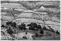 Badlands strata. Theodore Roosevelt National Park, North Dakota, USA. (black and white)