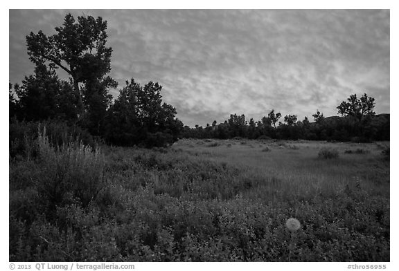 Meadow and colorful sunset clouds, Elkhorn Ranch Unit. Theodore Roosevelt National Park (black and white)