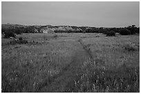 Faint trail at dusk, Elkhorn Ranch Unit. Theodore Roosevelt National Park, North Dakota, USA. (black and white)