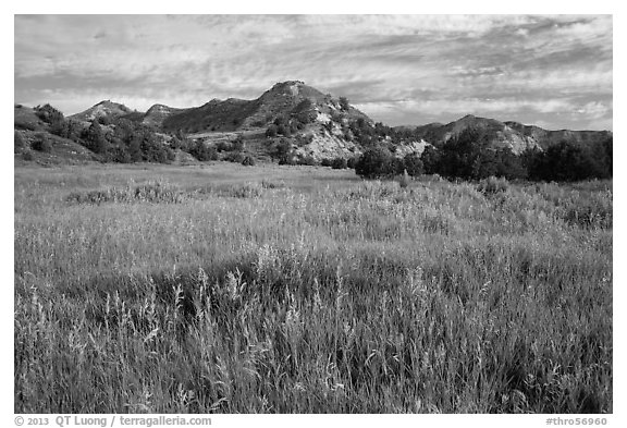 Meadow and badlands, early morning, Elkhorn Ranch Unit. Theodore Roosevelt National Park (black and white)