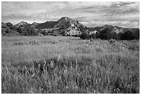 Meadow and badlands, early morning, Elkhorn Ranch Unit. Theodore Roosevelt National Park, North Dakota, USA. (black and white)