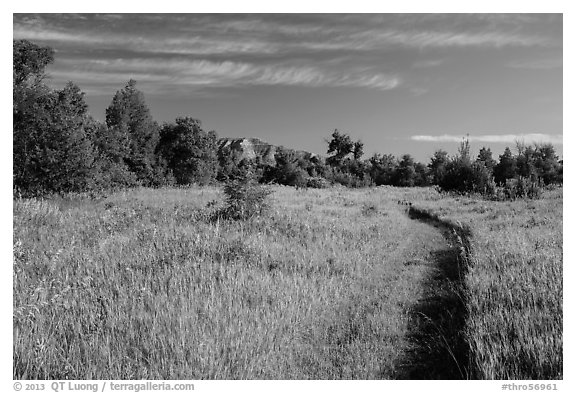 Trail through meadow, cottowoods and distant badlands, Elkhorn Ranch Unit. Theodore Roosevelt National Park (black and white)