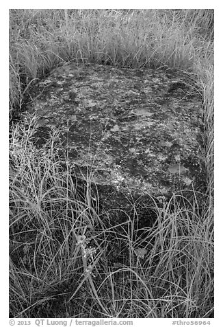 Foundation stone of Roosevelt Elkhorn Ranch. Theodore Roosevelt National Park (black and white)