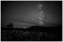 Milky Way, Elkhorn Ranch Unit. Theodore Roosevelt National Park, North Dakota, USA. (black and white)