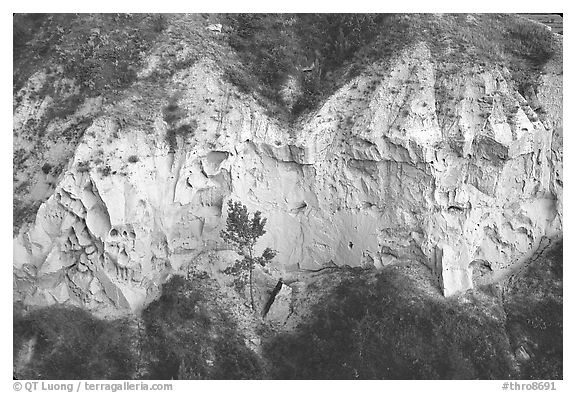 Wind Canyon walls. Theodore Roosevelt National Park (black and white)