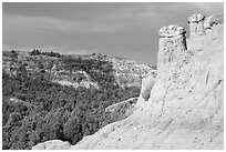 Caprock chimneys, Caprock coulee trail, North Unit. Theodore Roosevelt National Park, North Dakota, USA. (black and white)