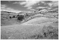 Slump blocks, North Unit. Theodore Roosevelt National Park ( black and white)