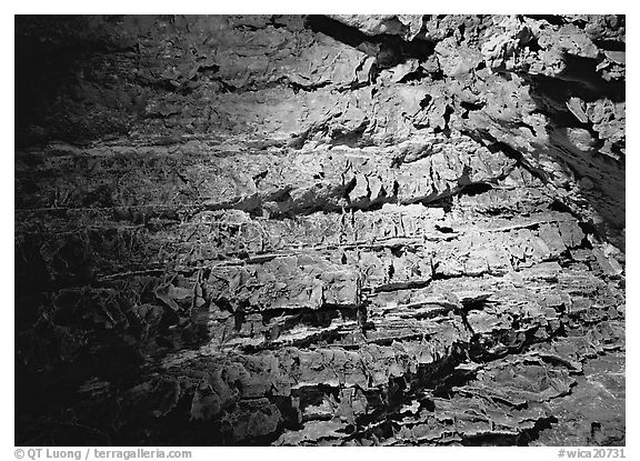 Cave concretions. Wind Cave National Park (black and white)