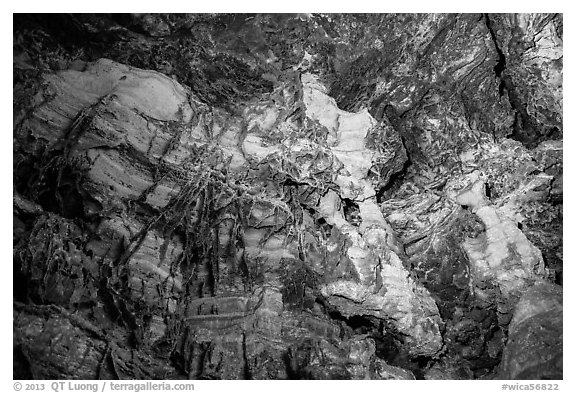 Cave ceiling with boxwork formation. Wind Cave National Park (black and white)