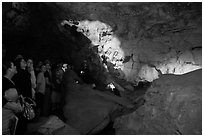 Tour group listening to ranger. Wind Cave National Park, South Dakota, USA. (black and white)