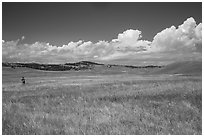 Park visitor looking, prairie and rolling hills. Wind Cave National Park ( black and white)