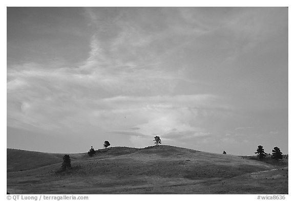 Hills, sunset. Wind Cave National Park (black and white)
