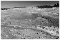 Green and red algaes in Norris geyser basin. Yellowstone National Park ( black and white)