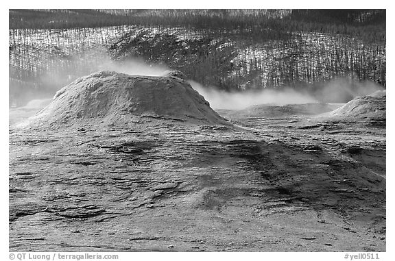 Geyser cone in Upper geyser basin. Yellowstone National Park (black and white)