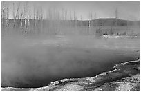 Pools, West Thumb geyser basin. Yellowstone National Park, Wyoming, USA. (black and white)