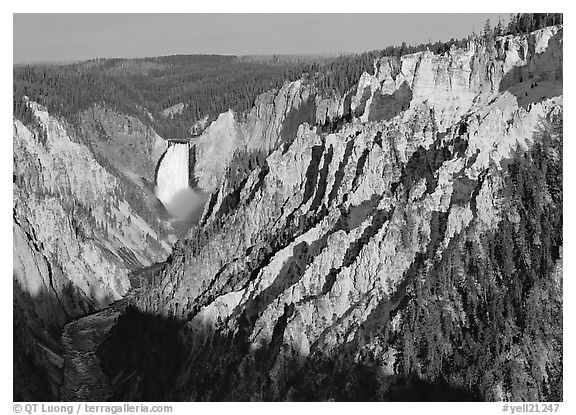 Wide view of Grand Canyon of the Yellowstone, morning. Yellowstone National Park (black and white)