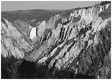 Wide view of Grand Canyon of the Yellowstone, morning. Yellowstone National Park ( black and white)