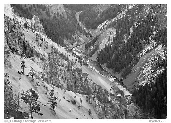 River and Walls of the Grand Canyon of Yellowstone, dusk. Yellowstone National Park (black and white)