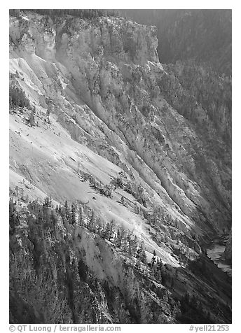 Slopes of Grand Canyon of the Yellowstone. Yellowstone National Park (black and white)