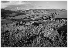 Rocks and grasses on Specimen ridge, late afternoon. Yellowstone National Park ( black and white)