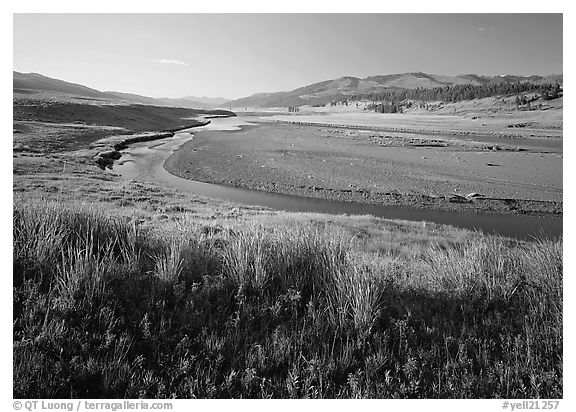 Meadow and river in wide Lamar Valley. Yellowstone National Park (black and white)