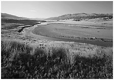 Meadow and river in wide Lamar Valley. Yellowstone National Park, Wyoming, USA. (black and white)