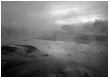 Steam in Norris Geyser Basin at dawn. Yellowstone National Park, Wyoming, USA. (black and white)
