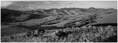 Hills in summer. Yellowstone National Park (Panoramic black and white)