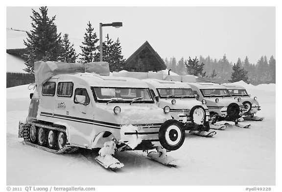 Snow coaches parked at Flagg Ranch. Yellowstone National Park (black and white)