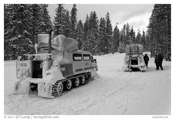 Snowcoaches on snow-covered road. Yellowstone National Park (black and white)