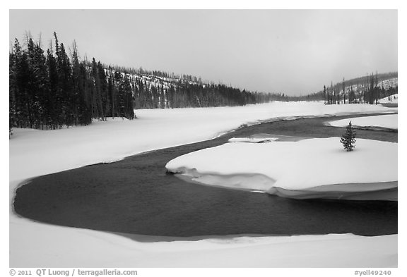 Lewis River valley in winter. Yellowstone National Park (black and white)