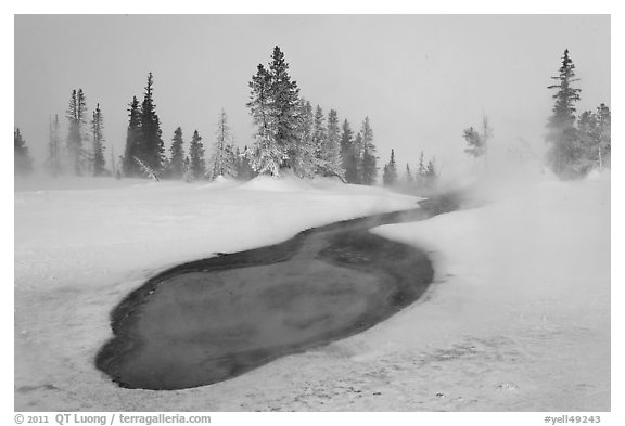 Thermal pool in winter, West Thumb Geyser Basin. Yellowstone National Park (black and white)