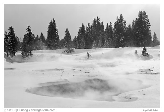 Steam rising from pool in winter, West Thumb. Yellowstone National Park (black and white)