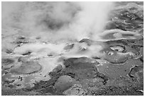 Hot springs detail. Yellowstone National Park, Wyoming, USA. (black and white)