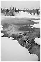 Hot springs and snow, Upper Geyser Basin. Yellowstone National Park, Wyoming, USA. (black and white)