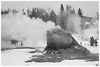 Giant Geyser cone and steam in winter. Yellowstone National Park, Wyoming, USA. (black and white)