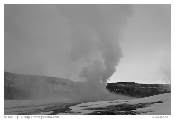 Old Faithful Geyser at dawn. Yellowstone National Park (black and white)