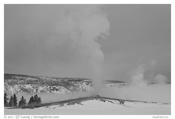 Old Faithful geyser plume in winter. Yellowstone National Park (black and white)