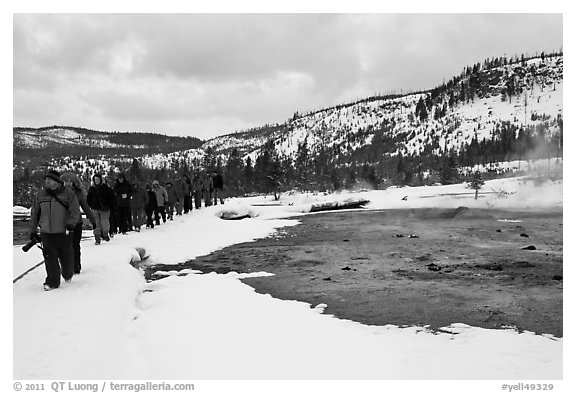 Large group of tourists in winter. Yellowstone National Park (black and white)