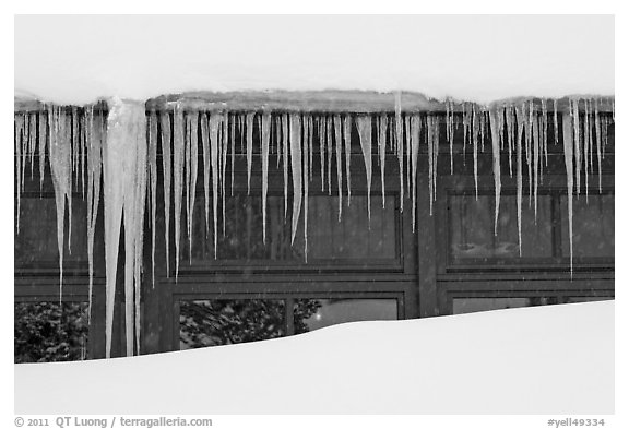 Icicles, Old Faithful Snow Lodge. Yellowstone National Park (black and white)