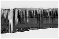 Icicles, Old Faithful Snow Lodge. Yellowstone National Park ( black and white)