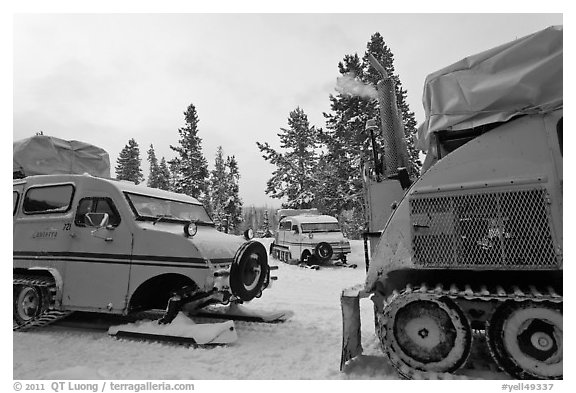 Bombardier snowcoaches. Yellowstone National Park (black and white)