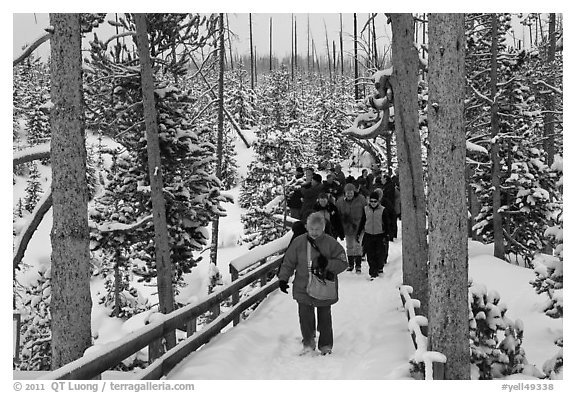 Tourists on boardwalk in winter. Yellowstone National Park (black and white)